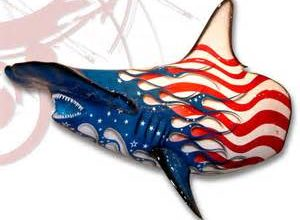 Photo of We Are Patriot Sharks Now!