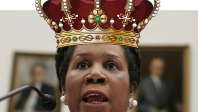 Photo of To Sheila Jackson-Lee, With Love