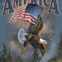 america-let-freedom-reign