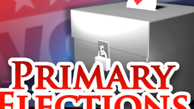 Photo of Primary Races to Watch On May 20, 2014