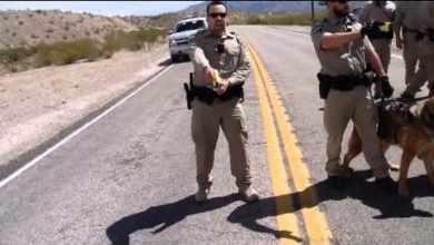 Photo of Clark County Sheriff Tells Feds To Back Down From Bundy Ranch, BLM Announces Pullout