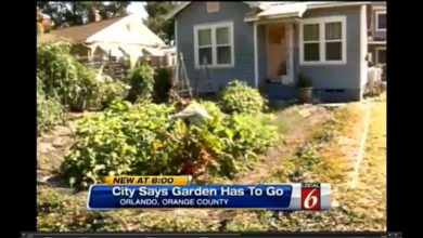Photo of Outlawed, Banned & Regulated:  YOUR Front Yard Gardens!