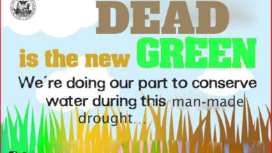 Photo of Latest Ad Campaign From California's Man-Made Drought: DEAD is the New Green