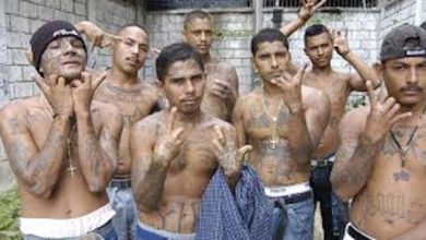 Photo of With Continuous (and Dangerous) Illegal Immigrant Problems, Is it Time for Mass Deportations?