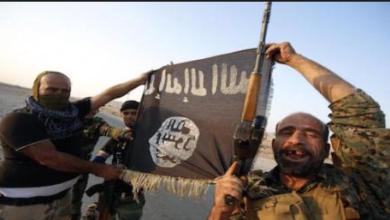 Photo of Are Terrorists Mentally Insane?