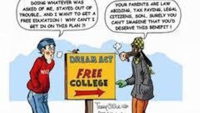 Photo of DHS College Incentive for People Living Illegally in America