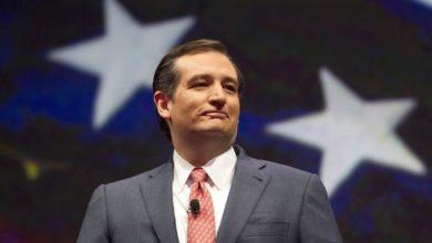 Photo of Carolyn Elkins:  My Case for Cruz