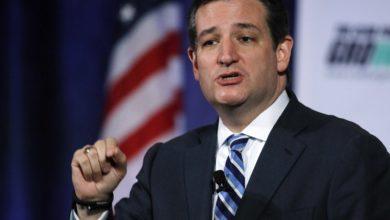 """Photo of Steve Berman:  """"Ted Cruz Is Barack Obama"""""""