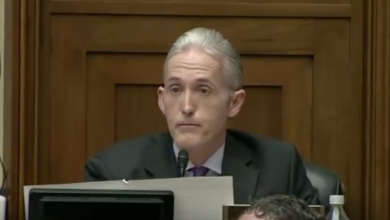 Photo of Post-Press Conf, Rep. Trey Gowdy Questions FBI Director's Decision About Hillary's Emails