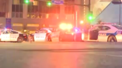 Photo of 14 Officers Shot, 5 Dead in Dallas:  Deadliest Event for Officers Since 9/11, Sniper(s) 'Wanted to Kill White People, Especially White Officers'