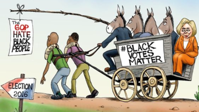 Photo of American Blacks Being Manipulated By The Radical Left