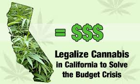 Photo of California it's not About the War on Drugs- It's About Protecting our Children's Minds