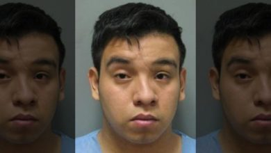Photo of Brutal Details in Alleged Rape of 14-year-old Girl, One Attacker Is Illegal Immigrant