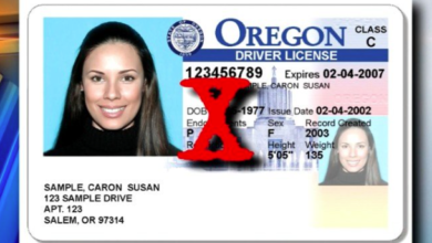 Photo of A Driver's License is Now More Dangerous Than the Road Itself
