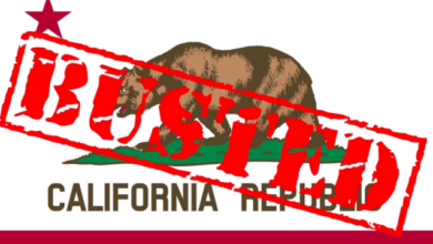 """Photo of Judicial Watch Suing CA Over """"Dirty Voter Registration Rolls"""""""