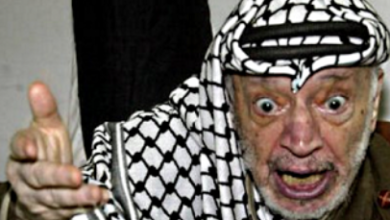 Photo of Daniel Greenfield: The Big Palestine Lie