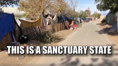 Photo of California Sanctuary State: How Dare You