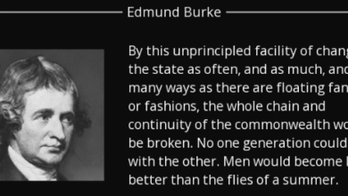 Photo of Edmund Burke and the Flies of Summer