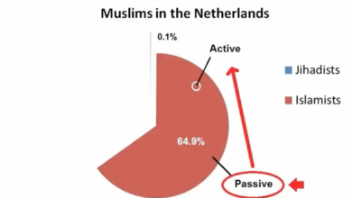 Photo of Daniel Greenfield: Islamic Insanity and Muslim Madness in the Netherlands