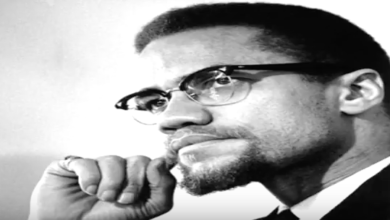 Photo of What Malcolm X Said About the Democrat Party