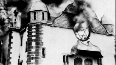 Photo of Daniel Greenfield: Muslim Refugees Perpetuate a New Kristallnacht