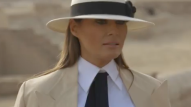 Photo of Why the Fashion Industry is Ridiculing #MelaniaStyle (and How YOU Can Dress Like Melania Despite Them)