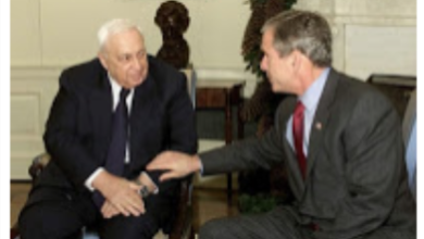 Photo of Barry Shaw: The Bush-Sharon Letters, and Why Peace is Not Possible With the Palestinians
