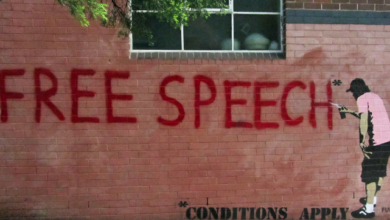 Photo of Daniel Greenfield: Americans Paid for the Internet, We Deserve Free Speech On It