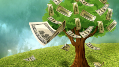 Photo of Congressional Money Trees