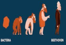 Photo of Prager University: Evolution – Bacteria to Beethoven