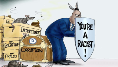 Photo of The Democrat Difference in 2020 (Yet They Remain the Party of Slavery)