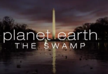 Photo of BRILLIANT Video – Planet Earth: The Swamp