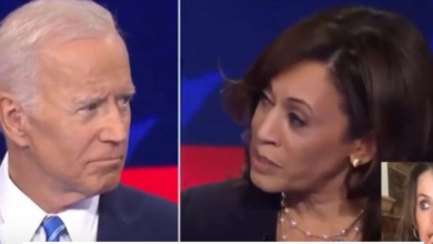 "Photo of Biden and Kamala: ""When Alliances Are Formed in Moral Sewers…"""
