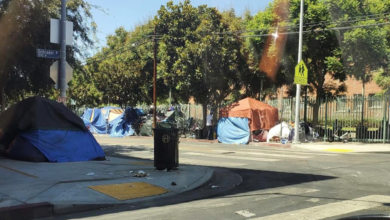 Photo of Hollywood Businesses Strangled by Homeless Encampments