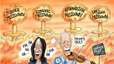 Photo of Michael Ingmire: The Madness of King Joe and Queen Kamala